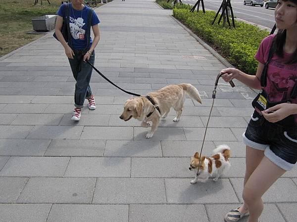 和新朋友小美一起去凹仔底公園囉.jpg