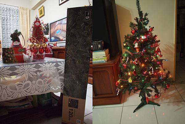 小小聖誕樹.jpg