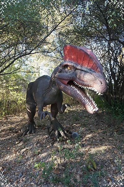 5.第一隻恐龍.jpg