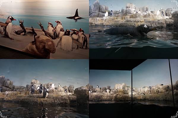 26.企鵝.jpg