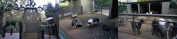 30.Tisch Children's Zoo.jpg