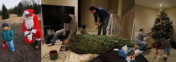 40.1130聖誕樹.jpg
