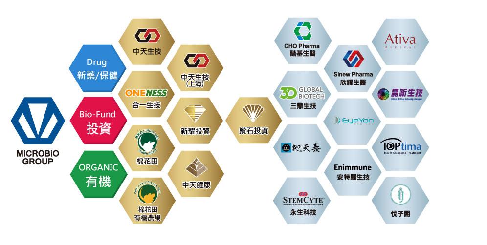 中天子公司投資公司.jpg