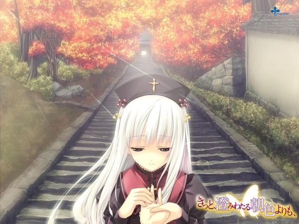 asairo_wall01_1280.JPG