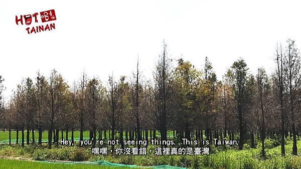 哈臺南截圖4-2.jpg
