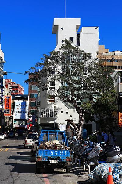 樹與建築4
