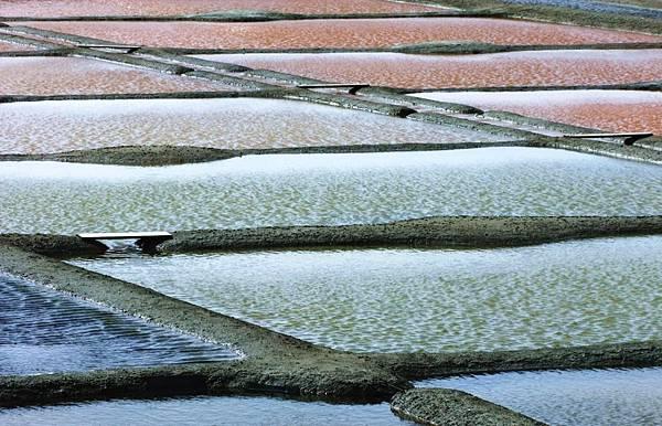 Brittany-salt-pans-at-Guerande.jpg