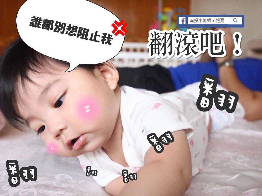 IMG_0874_副本.jpg
