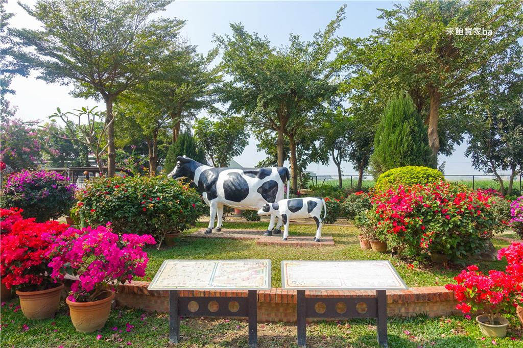 台南柳營親子景點乳牛的家 (4).jpg