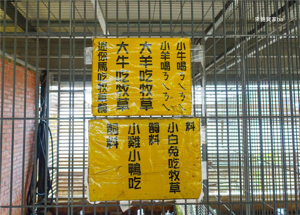 台南柳營親子景點乳牛的家 (7).jpg