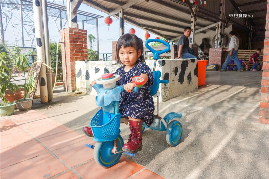 台南柳營親子景點乳牛的家 (38).jpg