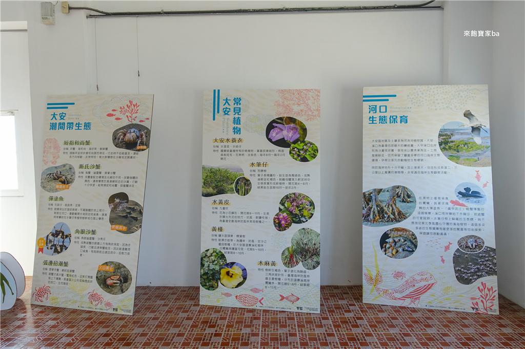 大安濱海樂園游泳池 (9).jpg