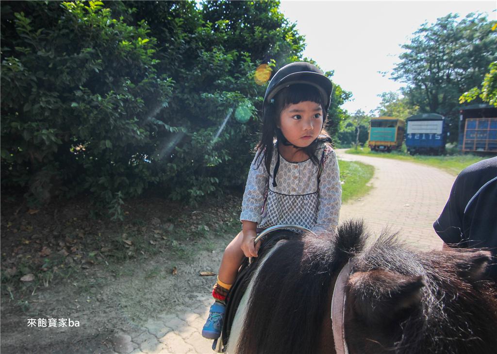 騎馬體驗-台南市立馬術場 (5).jpg