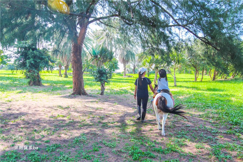 騎馬體驗-台南市立馬術場 (3).jpg