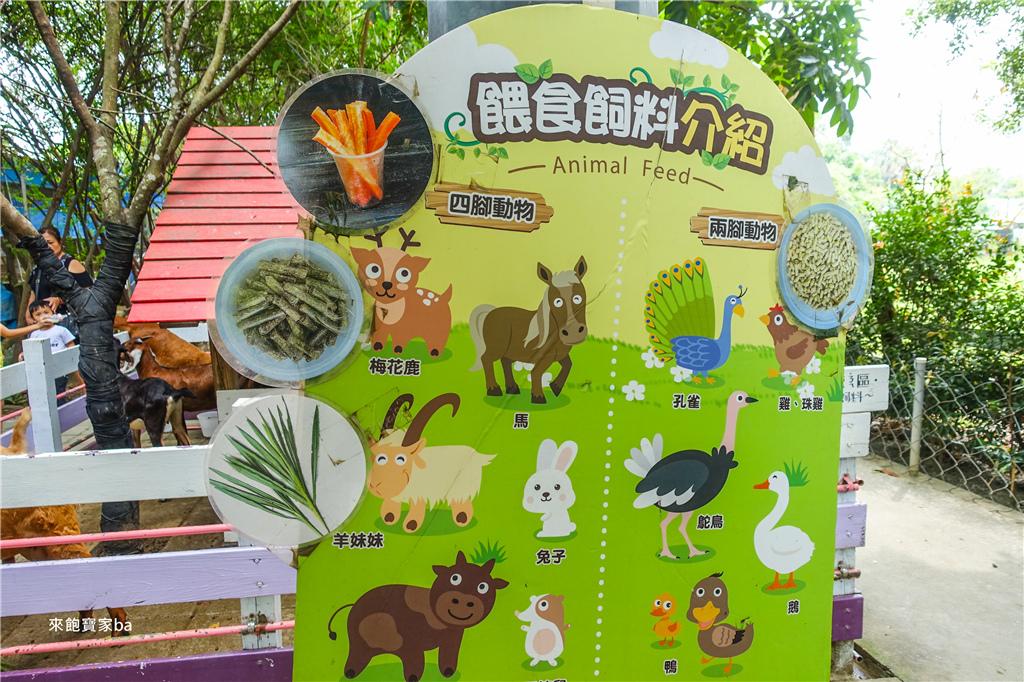 台南農場-樹谷農場 (9).jpg