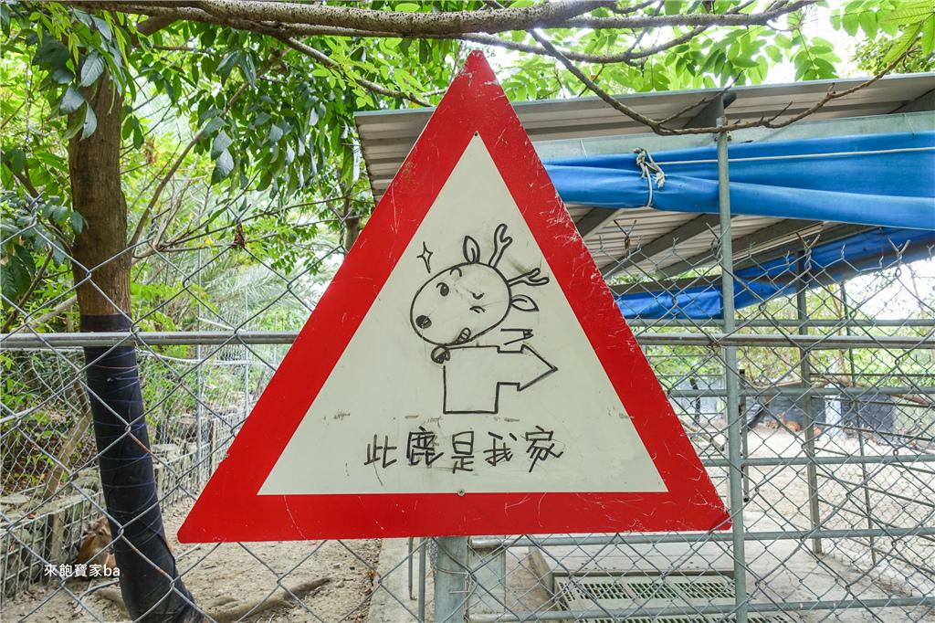 台南農場-樹谷農場 (33).jpg