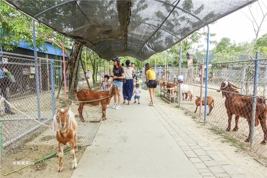 台南農場-樹谷農場 (40).jpg
