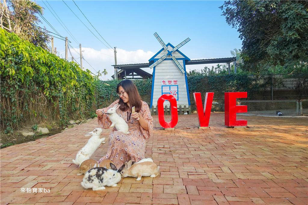 台中農場-兔樂園 (11).jpg