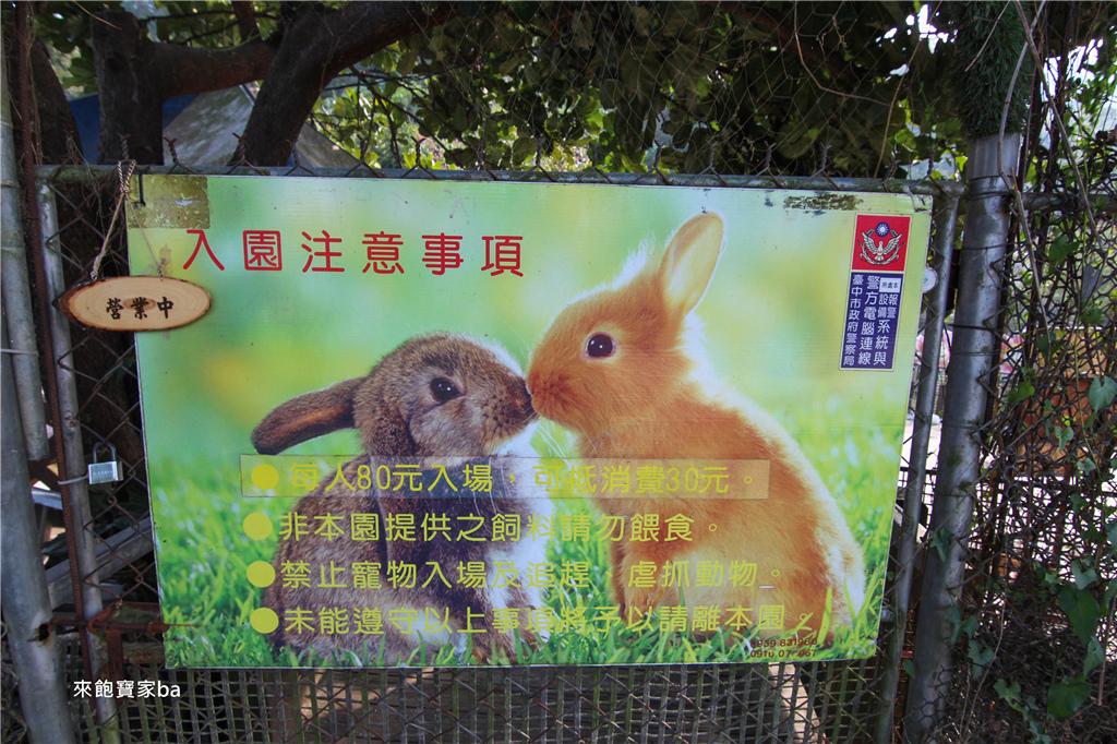 台中農場-兔樂園 (38).jpg