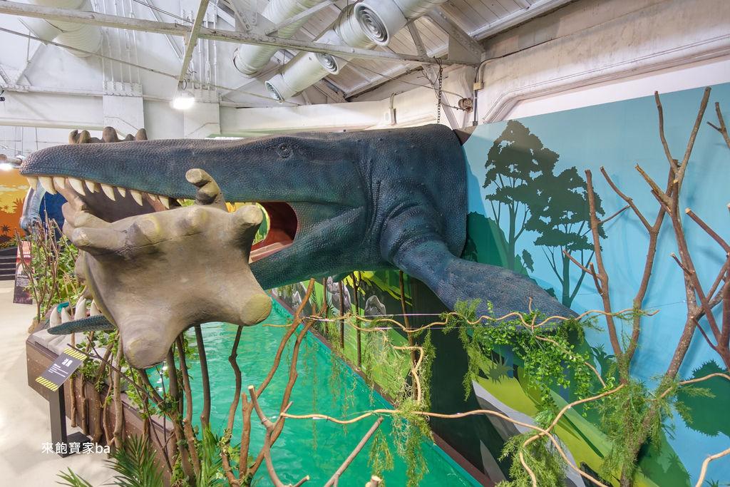台中展覽-侏羅紀恐龍水世界 (60).jpg