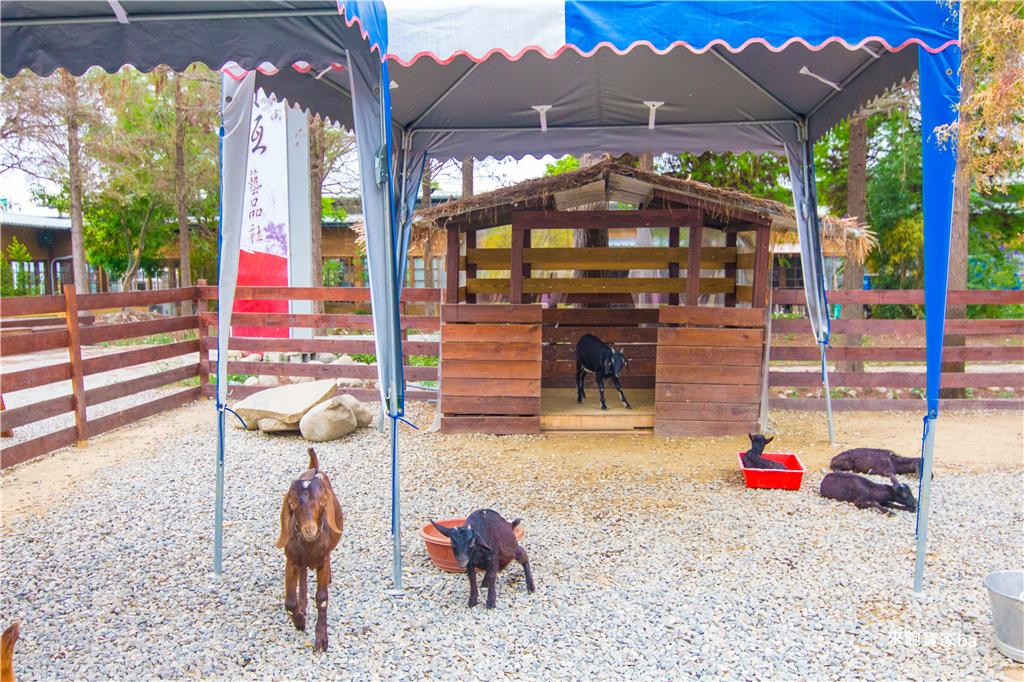 古坑鹿營農場-53.jpg
