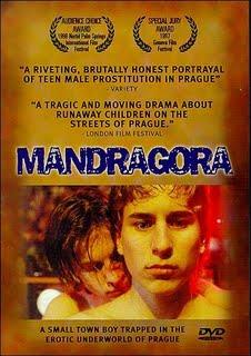 Mandragora1a.jpg
