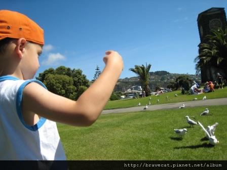 IMG_0729 Sumner Beach-Devan v.s. seagull餵食秀.jpg