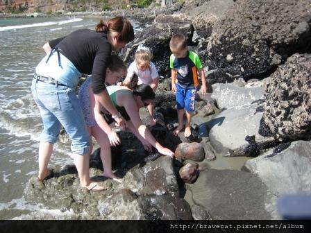IMG_0764 Sumner Beach-尋找螃蟹之旅.jpg