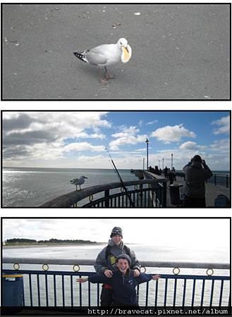 New Brighton.jpg