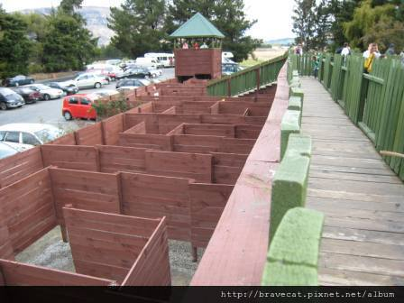 IMG_1170 Wanaka-Puzzling World,迷宮看起來很簡單,實際上很難.JPG