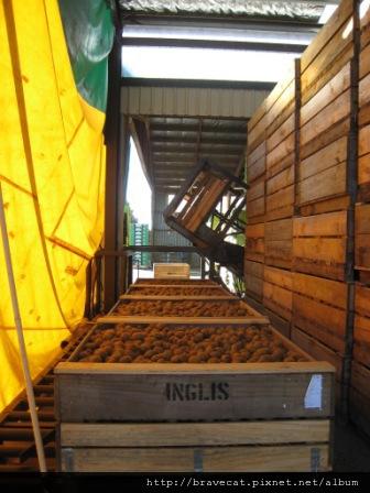 IMG_2362 Packhouse-卸貨區.JPG