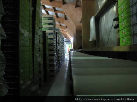 IMG_3115 Packhouse-輸送區.JPG