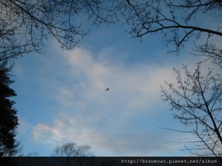 IMG_2539 我喜歡在天空翱翔的飛機