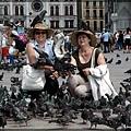 聖馬可廣場的鴿子