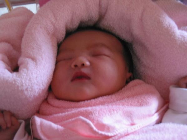 妹妹(剛出生)