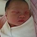 出生第二天