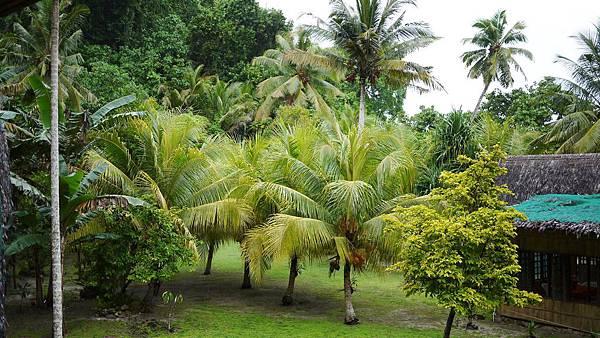 Ngellil Resort-1