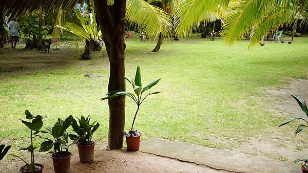 Ngellil Resort