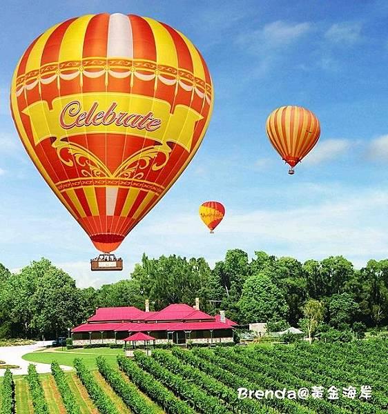 Ballooning & O'Reillys Vineyard new balloon nov 09 LR1.jpg