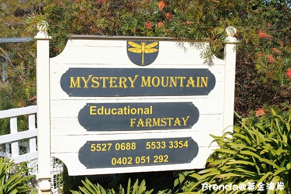 Mystery Mountain, Gold Coast
