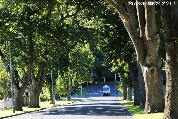 NZ露營車之旅 Day 5