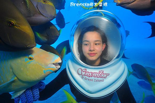 Seawalker-002.jpg