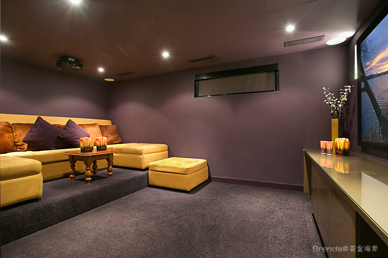 OCEAN Theatre Room.jpg