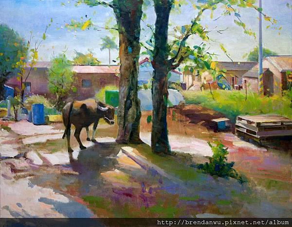 農村曲-水牛的故事