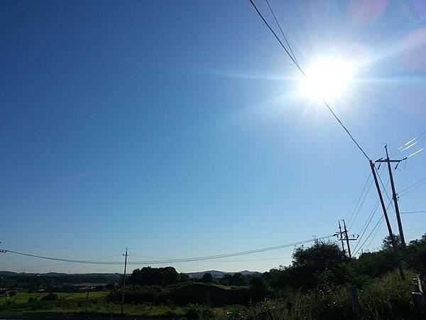 photo_901020203311983.jpg
