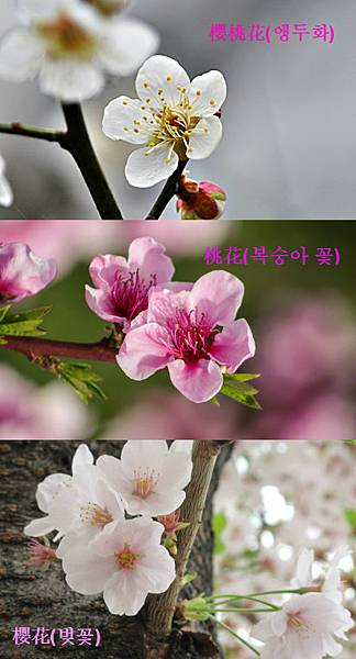FotorCreated05.jpg