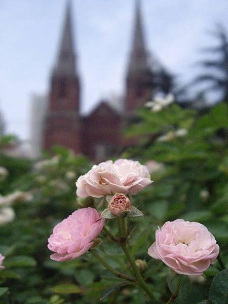 徐家匯天主教堂