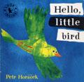 AFWA561-HELLO LITTLE BIRD