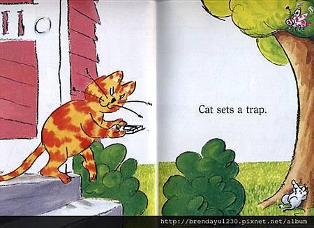 AFRH157-STEP CAT TRAP-IN