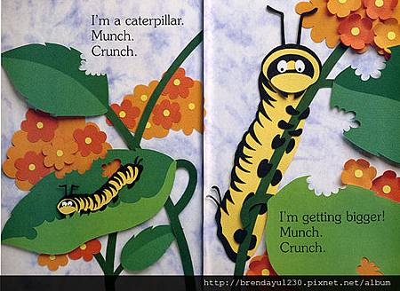 I AM A CATERPILLAR-IN